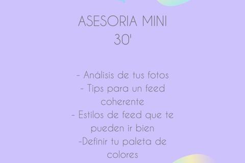 ASESORIA MINI