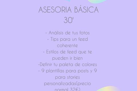 ASESORIA BASICA